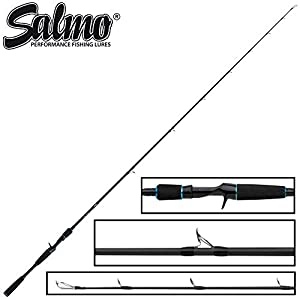 Pike Lure fishing Rods Salmo Hornet