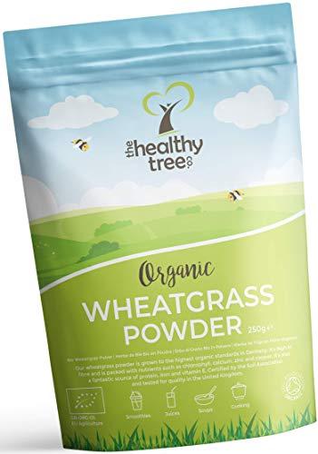 Polvere di Erba di Grano Bio di TheHealthyTree Company - Alto Contenuto di Fibre, Vitamina E, Potassio e Ferro - Pura… 1 spesavip