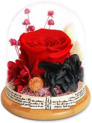 KING DOO Forever Red Rose in Glass Dome - Handmade Artificial Flowers Galaxy Roses idea Gifts for Women or Friend or Family on Christmas Valentine's Day Birthday Anniversary Mother's Day