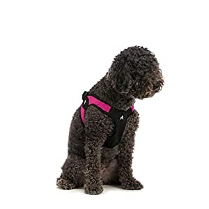 Gooby Dog Harness – Escape Free Easy Fit Patented Step-in Small Dog Harness – Perfect on The Go – No Pull Harness for…