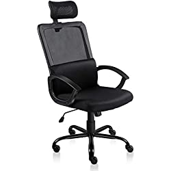 Statesville Ergonomic Office Chair Adjustable Headrest Mesh Office Chair Office Desk Chair Computer Task Chair (Black)
