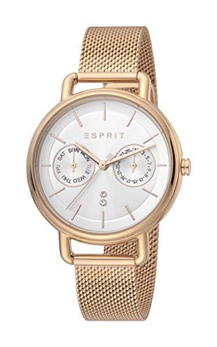ESPRIT Women's Ellen Multi Fashion Quartz Watch - ES1L179M0095