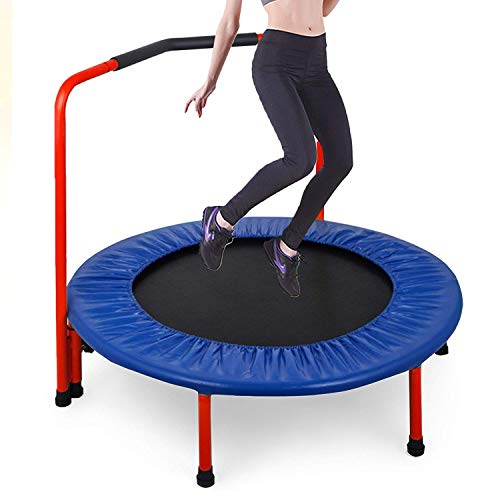 Popsport Mini Trampoline 220/330 lbs Fitness Trampoline in-Home Rebounder with Bungee Cover and Rubber Bungees for Home Cardio Exercise (36