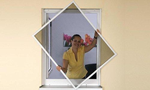 Insektenschutz Fliegengitter Fenster Alurahmen Basic weiß, 100 x 120 cm