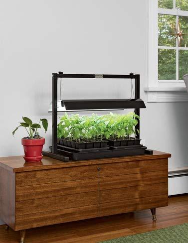 Amazoncom Led Sunlite Compact Tabletop Garden Garden Outdoor