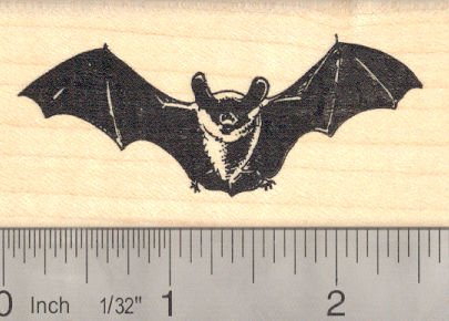 Amazon Realistic Bat Rubber Stamp Everything Else