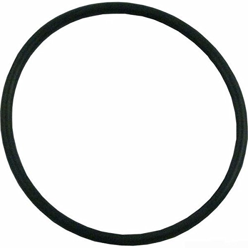 Pump Union O-ring - Spaworks Union O Ring 2