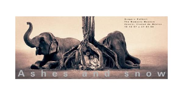 GREGORY COLBERT Mexico City ART PRINT 36x15 Elephant Poster Treehouse