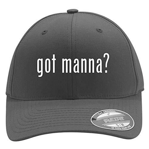 got Manna? - Men's Flexfit Baseball Cap Hat, Silver, Small/Medium (Best Ormus On The Market)