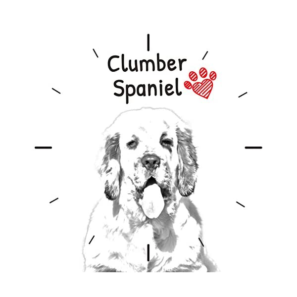 Clumber Spaniel, freestanding MDF Floor Clock with an Image of a Dog 2