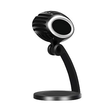 HM2 USB Studio Grabación Micrófono Condensador Micrófono de ...