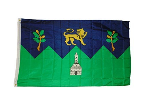 Wicklow County Irish Ireland Flag 3 X 5 3x5 Feet New by quar