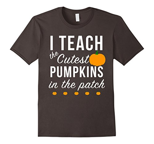 Mens I Teach The Cutest Pumpkins In The Patch Shirt, Funny Tee 3XL Asphalt - Costumes For Teachers Ideas