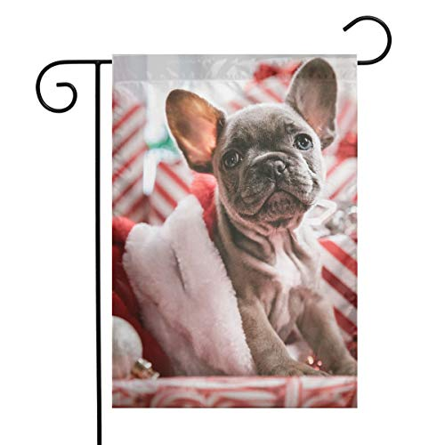 - MINIOZE Cute Christmas Brindle French Bulldog Puppy in Santa Hat Themed Welcome Mailbox Small Jumbo for Outdoor Decorations Ornament Picks Garden House Home Yard Traditional Decorative Front 12