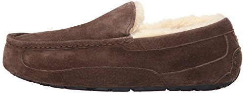 Expresso Ascot Homme 5775 Ugg Chaussons xCFInqdw