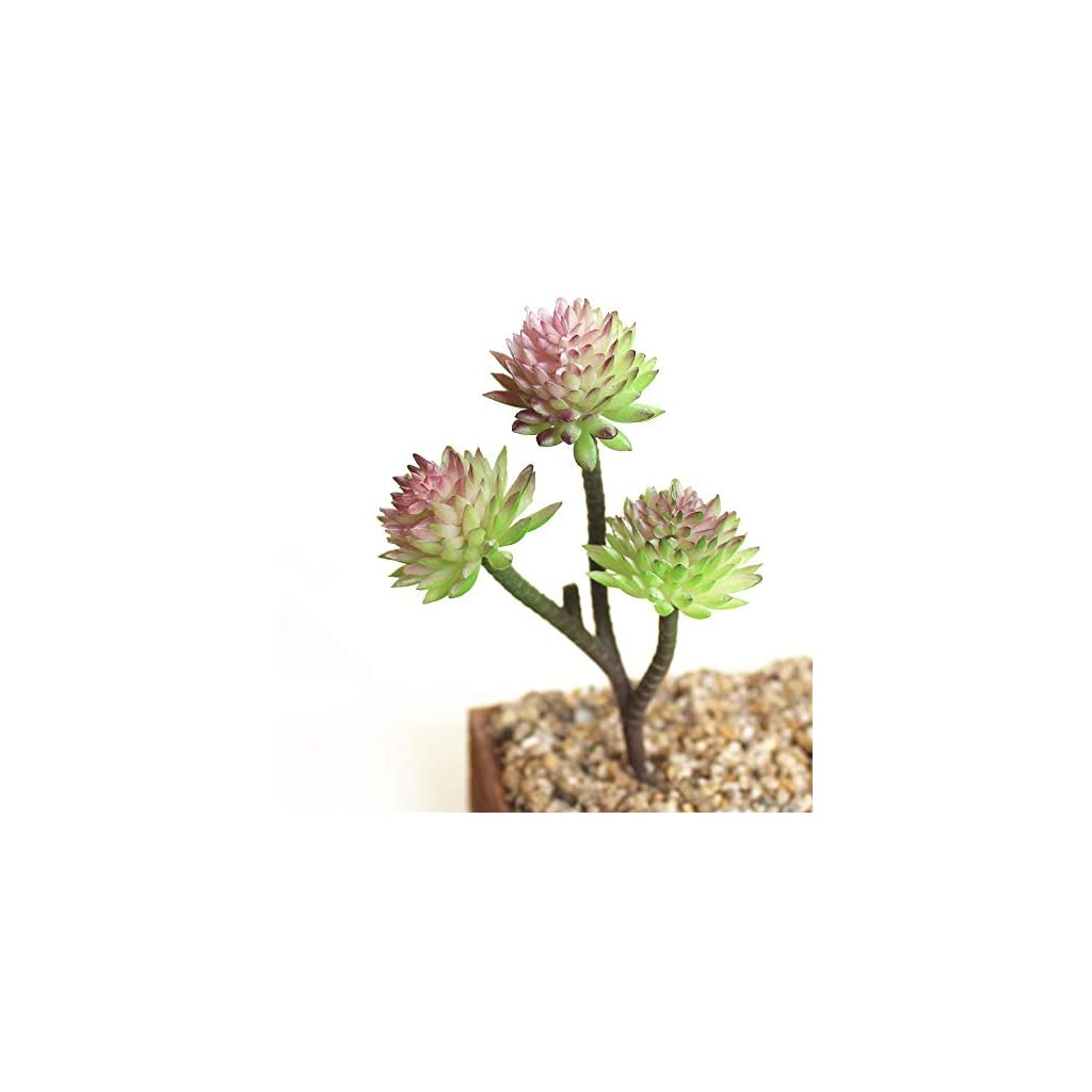 Allegro-Huyer-Faux-Cactus-Plants-Assorted-Realistic-Green-Faux-Artificial-Succulent-Plants-Aloe-Foliage-Fake-Plastic-Cactus-Succulents-Home-Garden-Wall-Decor