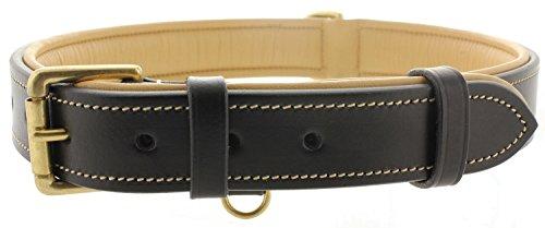 Viosi Leather Padded Dog Collar - Made of Genuine Kingston Luxury Leather [X-Large, Black]