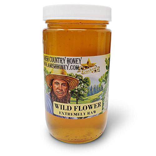 Goshen Honey Amish Extremely Raw WILDFLOWER Honey 100% Natural Domestic Honey with Health Benefits Unfiltered Unprocessed OU Kosher Certified | 1 Lb Glass Jar