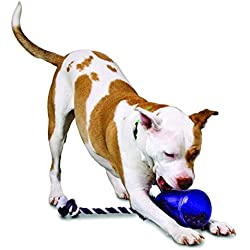 PetSafe Busy Buddy Tug-A-Jug Meal-Dispensing Dog Toy Use with Kibble or Treats