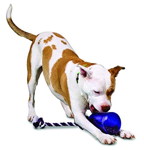 - PetSafe Busy Buddy Tug-A-Jug Meal-Dispensing Dog Toy Use with Kibble or Treats