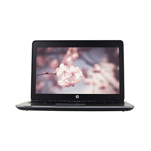HP EliteBook 820 G2 12.5in Laptop, Intel Core i5-5300U 2.3GHz, 8GB Ram, 256GB Solid State Drive, Windows 10 Pro 64bit (Renewed) (Hp Solid State Drive Laptop)