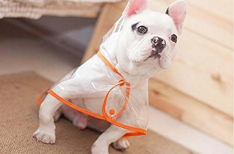 Ropa para Mascotas - Perro Impermeable Perrito Impermeable Impermeable Perrito Mascota Ropa para Perros Teddy Bear