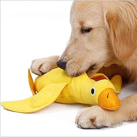 HIPIDOG Heimtierbedarf Hund beißt Plüschtier Ente Figur