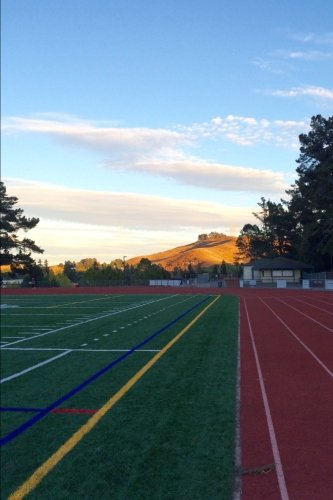 Track and Field  Complex Journal: 150 Page Lined Notebook/Diary