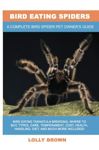 Bird Eating Spiders: Bird Eating Tarantula breeding, where to buy, types, care, temperament, cost, health, handling, diet, and much more included! A Complete Bird Spider Pet Owner's Guide