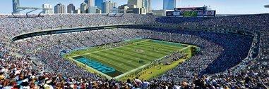 - Masterpieces 91432 Ap NFL Carolina Panthers Puzzle, 1000 Pieces