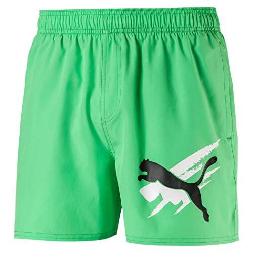 Shorts Summer Graphic M Ess Puma Misure Colore Verde HTwxEt5q