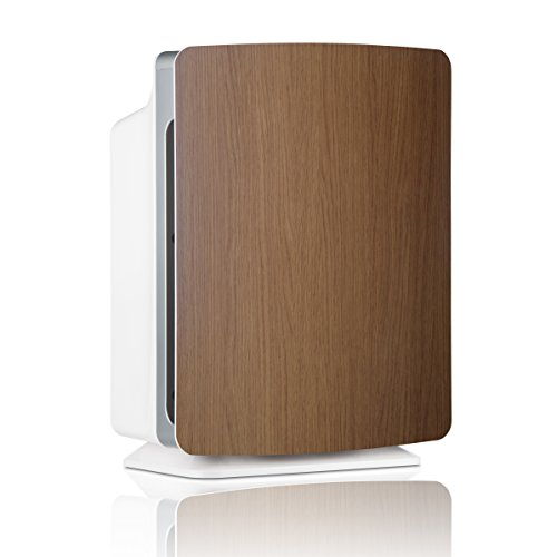 Alen BreatheSmart FIT50 Customizable Air Purifier with HEPA-Pure Filter for Allergies and Dust (Oak, 1-Pack)
