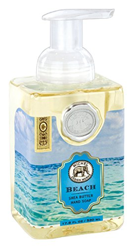 Amazoncom Michel Design Works Foaming Hand Soap 178 Ounce Beach