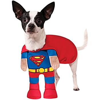 Amazoncom Dc Comics Pet Costume Medium Superman Pug Costume