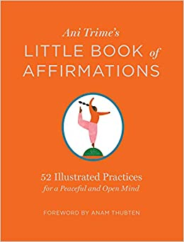 Ani Trimes Little Book of Affirmations: 52 Illustrated ...