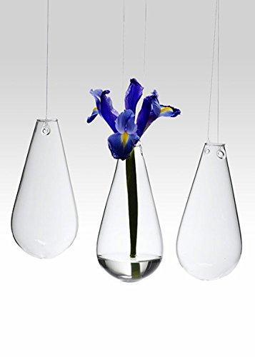 Teardrop Hanging Bud Vases, Set of 3 (Teardrop Bud Vase)
