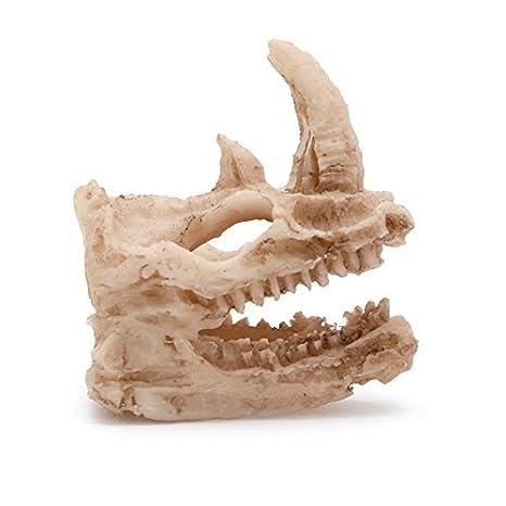 Jiamins cráneo de Dinosaurio Decoration Acuario Décor de Acuario Resina Decoration Juego Juguete Peces gambas: Amazon.es: Productos para mascotas