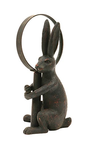 (Creative Co-op Pewter Rabbit Holding Removable Hand Magnifying Glass)