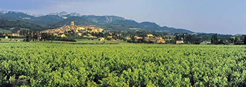 Buy cotes du rhone villages