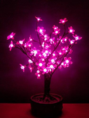 Bright Baum LED Light Artificial Bonsai Tree, 2.0-Feet, Pink Juno by Bright Baum