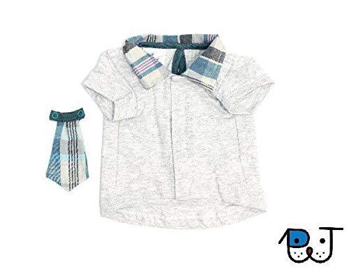 Roupa para Cães e Gatos Camisa com Gravata Cinza P