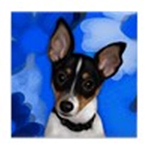 CafePress - Rat Terrier Dog - Tile Coaster, Drink Coaster, Small Trivet