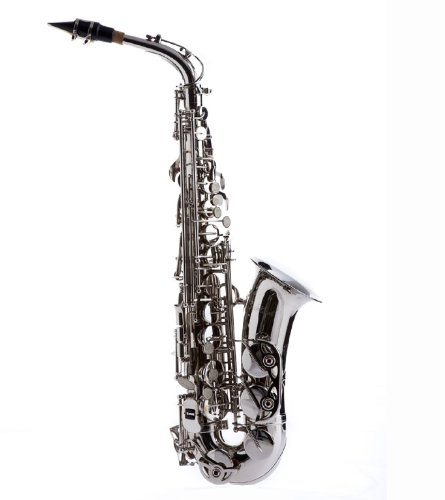 Hawk WD-S415 Student Alto Saxophone with Case, Mouthpiece and Reed, Nickel Plated