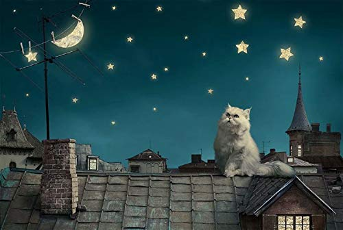 Queenie 1000 Piece Lovely Persian Cat Starry Sky Stars Moon Quiet Night Scene Painting Kids Educational Learning Toys Wooden Intelligence Jigsaw - Star Persian