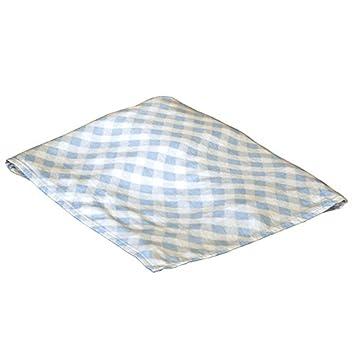 9b436e24d5c Amazon.com: Applesauce Rayon Swaddle Blanket, Blue Gingham: Baby