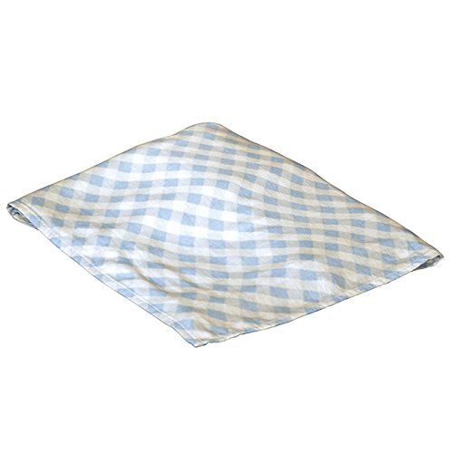 Applesauce Rayon Swaddle Blanket, Blue (Gingham Baby Blanket)
