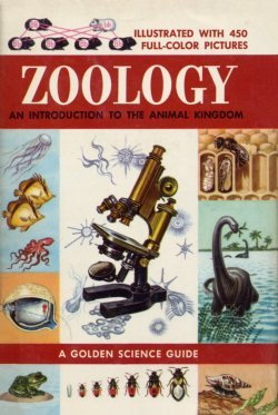 Zoology-An-Introduction-to-the-Animal-Kingdom-(A-Golden-Science-Guide)