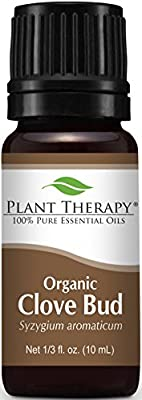 Plant Therapy Clove Bud Organic Essential Oil 100% Pure, Undiluted, Therapeutic Grade