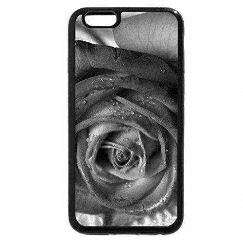 iPhone 6S Plus Case, iPhone 6 Plus Case (Black & White) - Rainbow Rose