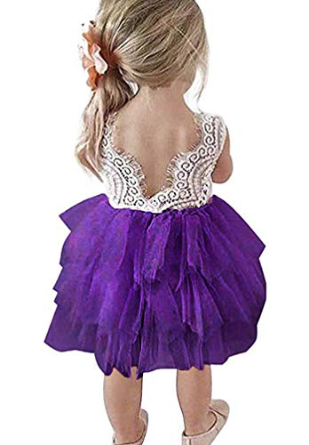 JNKLWPJS Baby Girls Tutu Dress Backless A-line Lace Back Flower Party Tulle Dress D-Purple 5 Years]()